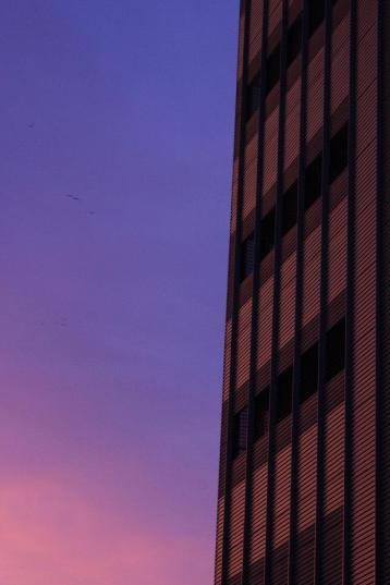 pink_morning